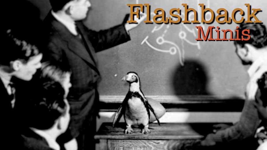 Flashback Minis: The History of YSU's Penguin Mascot